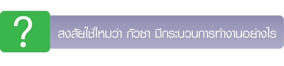 GuasaProcess-label